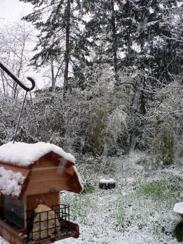 april-snow-full